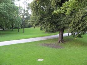 حديقة-فيينا