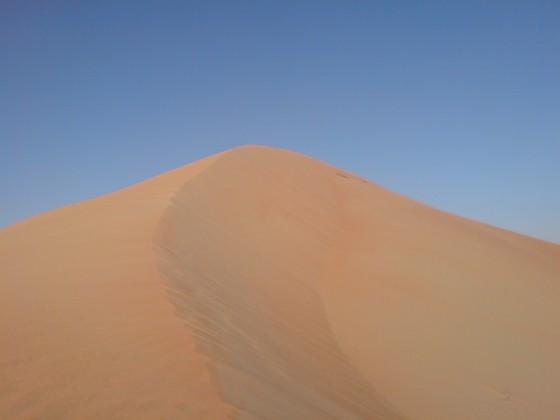 صحراء الامارات - قويسرة