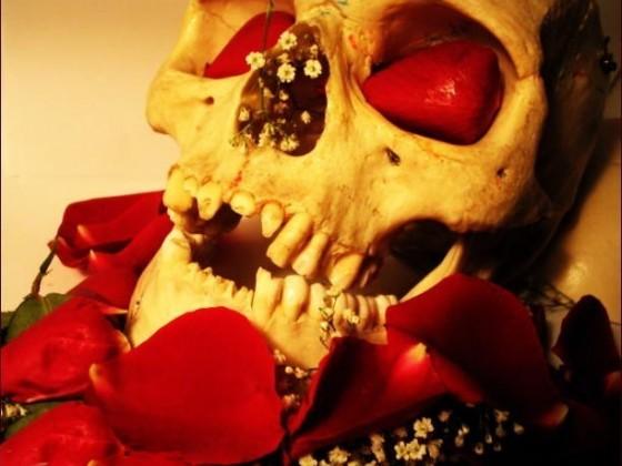يموت الانسان ويبقى الحب الصادق