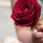 الورد من له ؟