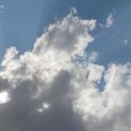 سماء البريمي