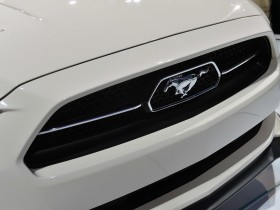 Mustang 50 Year limited 2015