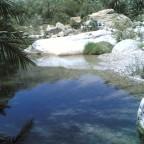 صورة من وادي طيوي  2007