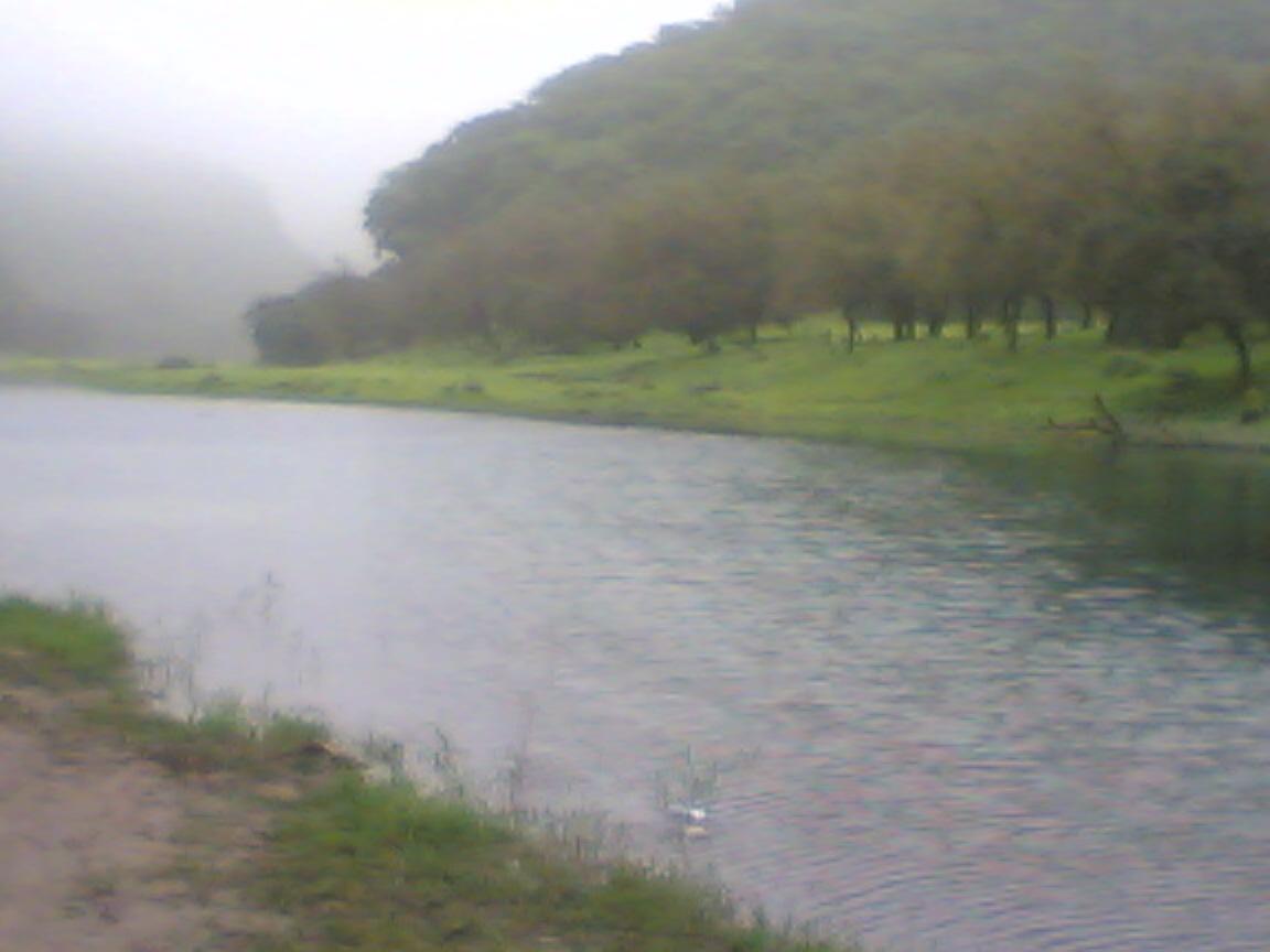 دربات2006