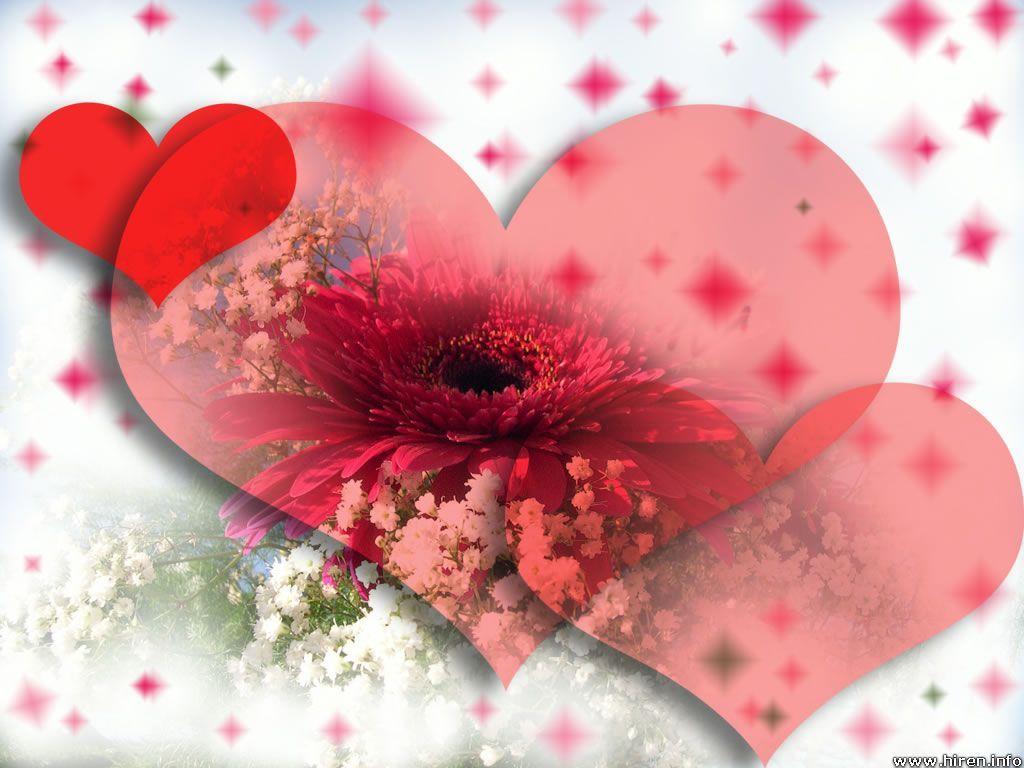 love heart red flower 31000